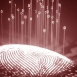 Fingerprint Data